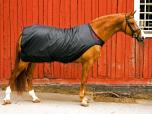 Back On Track Skrittmaskinstäcke Häst